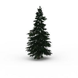 松树灌木3d模型