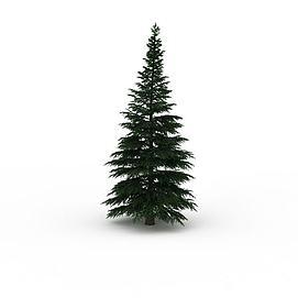 松木<font class='myIsRed'>圣诞树</font>3d模型