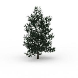3d<font class='myIsRed'>圣诞</font>树植物模型