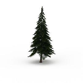 3d柏<font class='myIsRed'>树</font>模型
