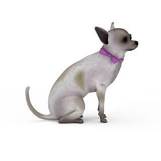 宠物<font class='myIsRed'>狗</font>3d模型