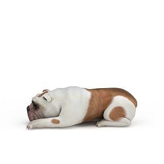 宠物癞皮<font class='myIsRed'>狗</font>3d模型