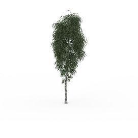 公园绿化<font class='myIsRed'>树</font>3d模型