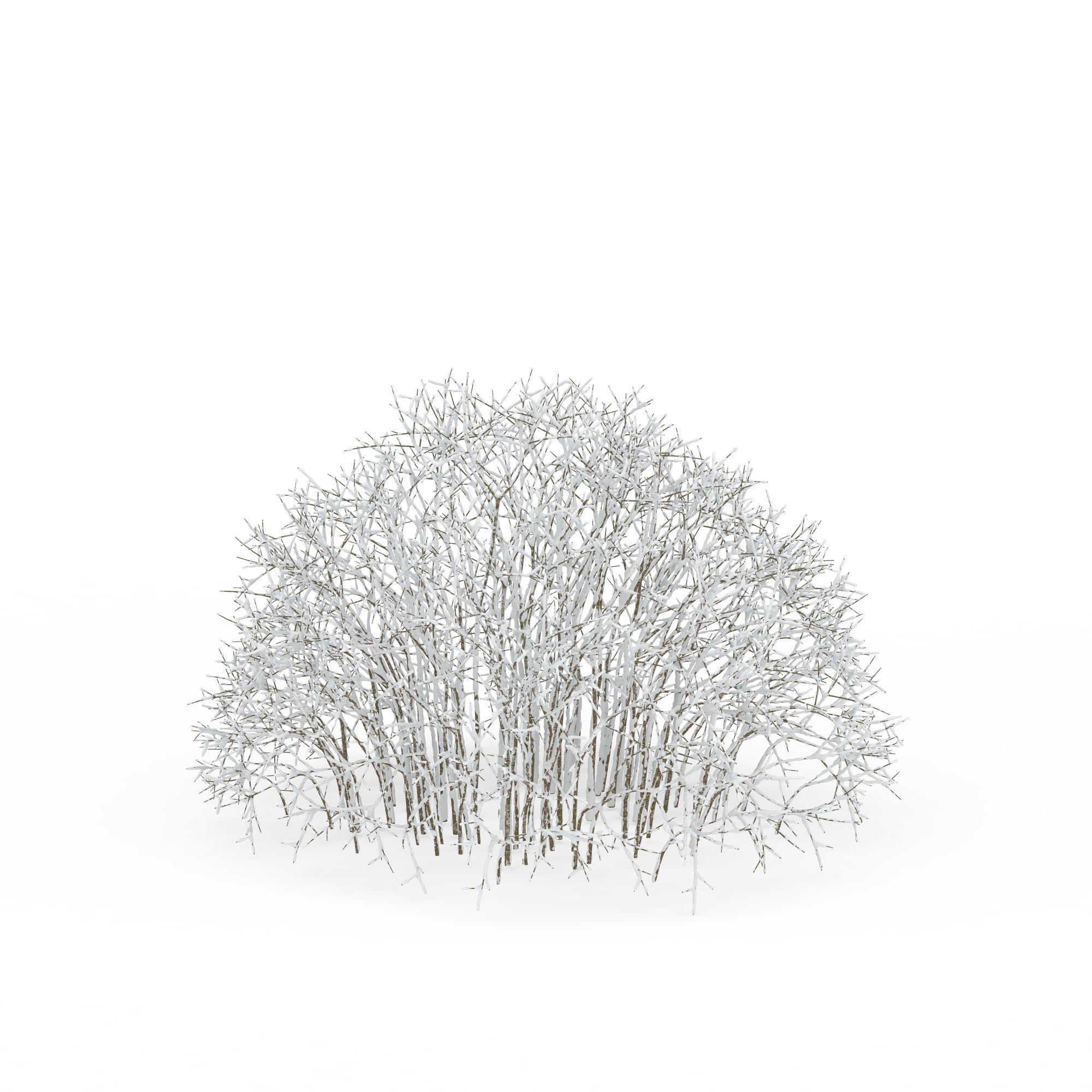 雪��/~���x+�x�&�7:d��_一片挂雪树木高清图下载