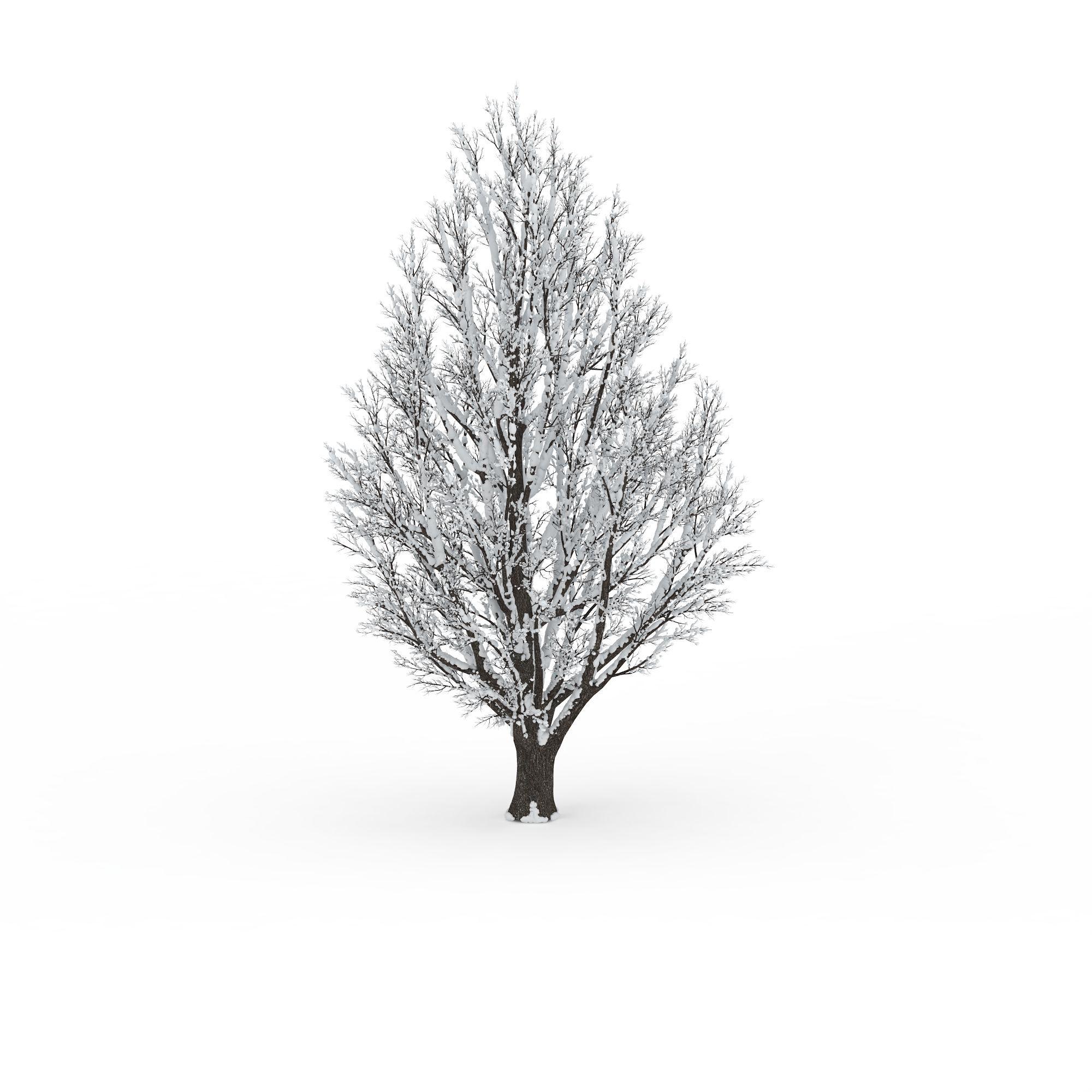 冬天落雪树图片_冬天落雪树png图片素材_冬天落雪树图