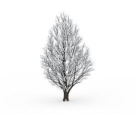 冬天落雪<font class='myIsRed'>树</font>3d模型