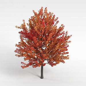 3d橘色<font class='myIsRed'>葉子</font>樹木模型