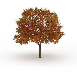 大<font class='myIsRed'>树</font>冠黄叶<font class='myIsRed'>树</font>3d模型