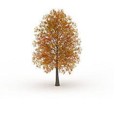 黄色叶子绿化树3D模型3d模型