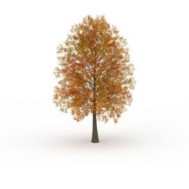 黄色叶子绿化<font class='myIsRed'>树</font>3d模型