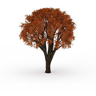 秋天黄叶大树3d模型