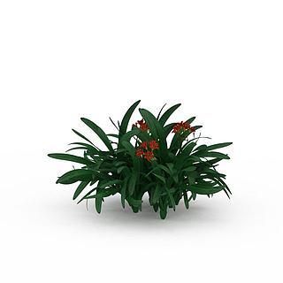 橘色小花植物3d模型