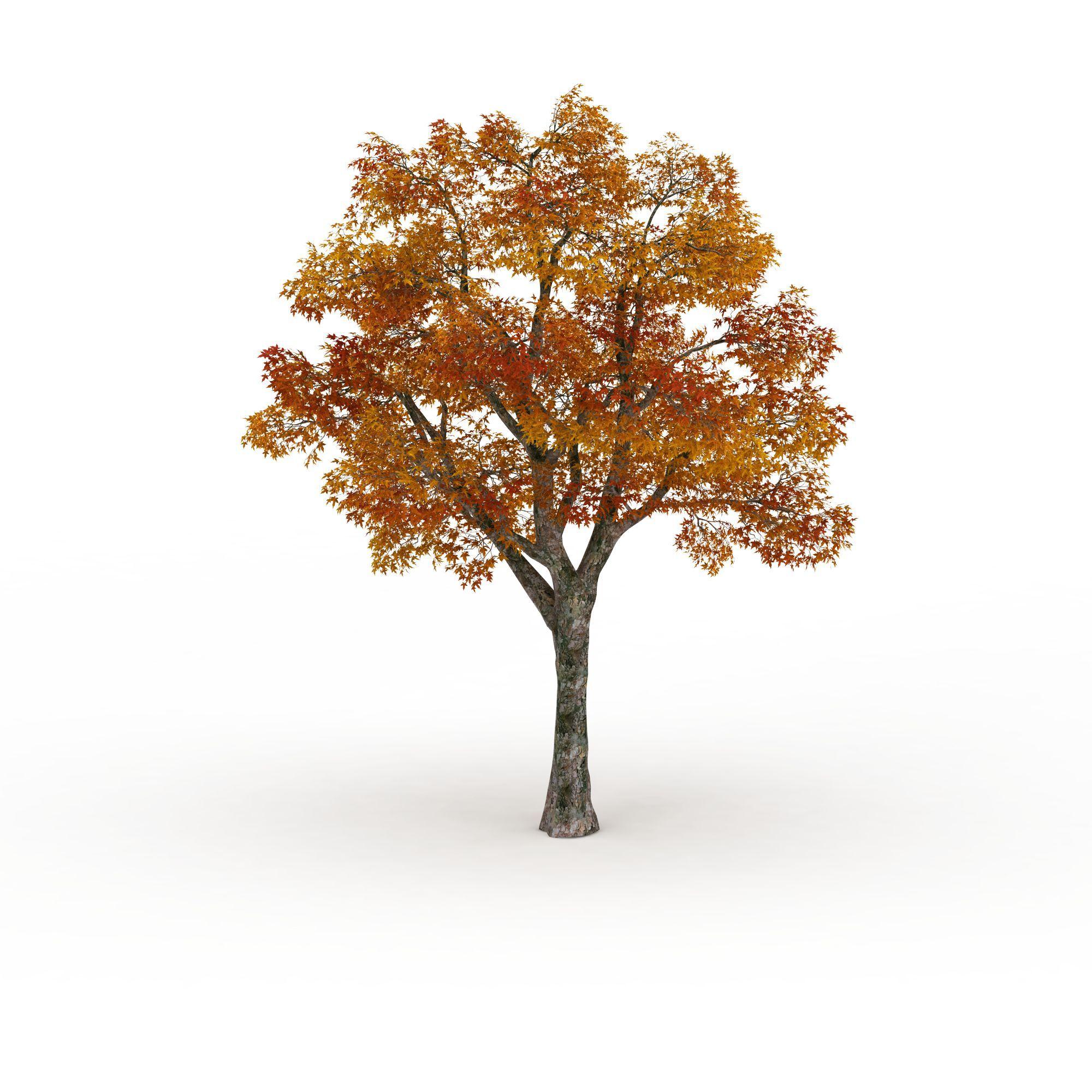 红叶树高清图下载