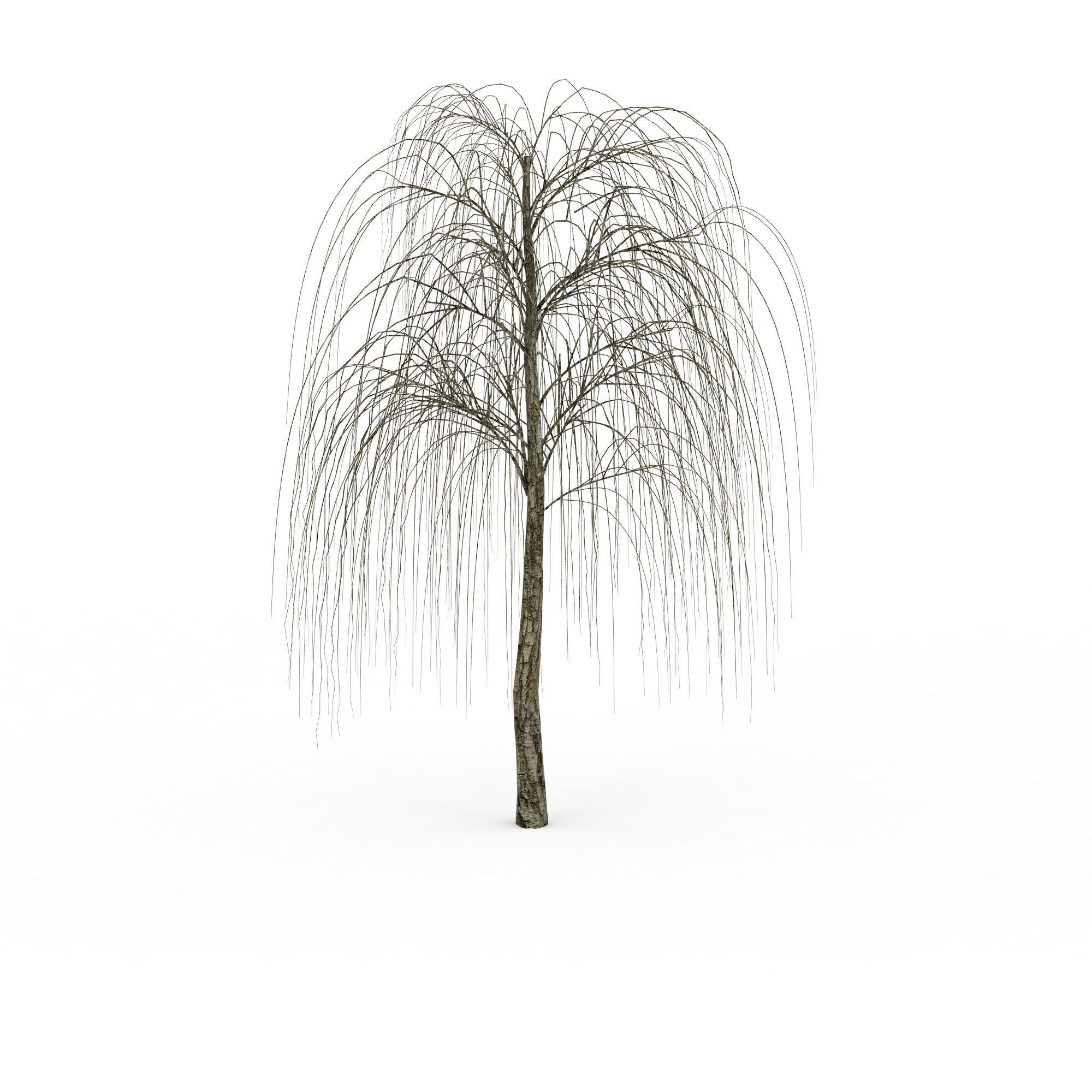 绿色柳树png高清图片下载
