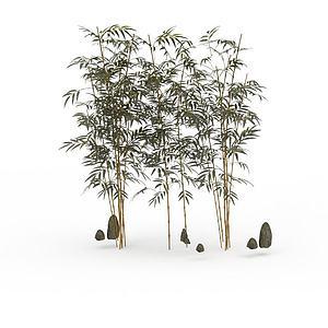 園藝竹子模型