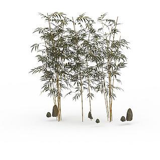 园艺竹子3d模型