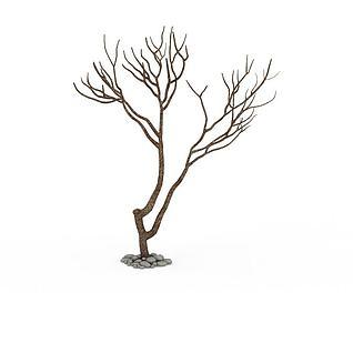 冬日景观树3d模型