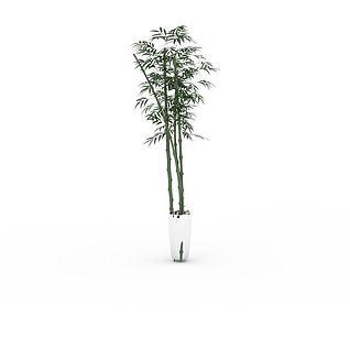 绿竹盆栽3d模型