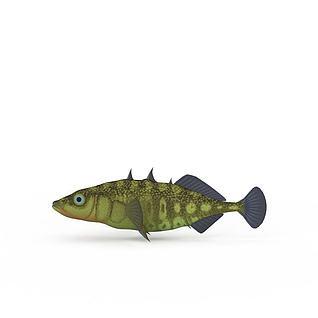 褐色鱼3d模型