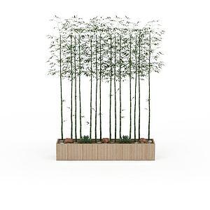 室內竹子模型