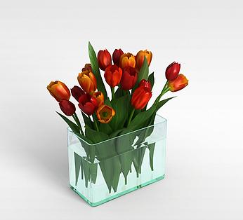 红色观赏花