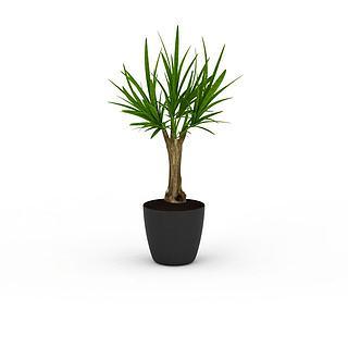 小树<font class='myIsRed'>植物</font>3d模型