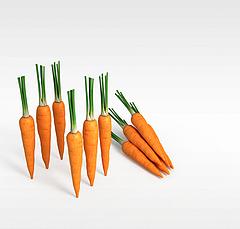 胡萝卜模型3d模型