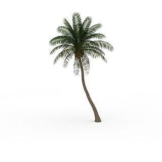 海南椰子树3d模型