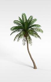 3d椰树模型