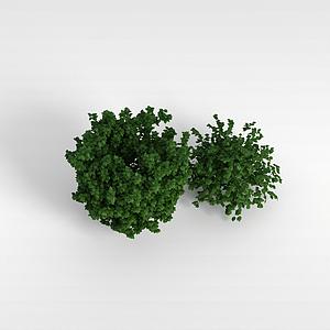 3d<font class='myIsRed'>灌木丛</font>模型