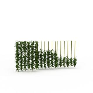 藤蔓植物3d模型