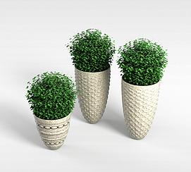 3d花草盆栽模型