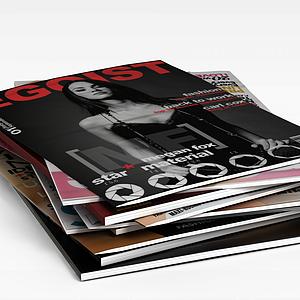 3d花花公子<font class='myIsRed'>杂志</font>模型