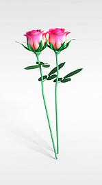 3d粉色玫瑰花模型