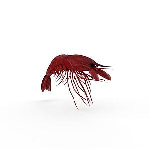 煮熟大龙虾模型3d模型