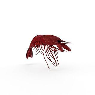 煮熟大龙虾3d模型