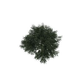 <font class='myIsRed'>灌木丛</font>3d模型