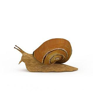 蜗牛3d模型3d模型