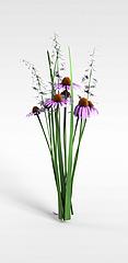 花卉植物模型3d模型