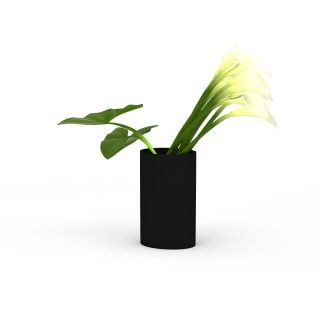 <font class='myIsRed'>植物</font>插花3d模型