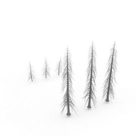 3d冷杉<font class='myIsRed'>树</font>模型