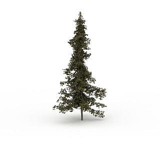 朴<font class='myIsRed'>树</font>3d模型