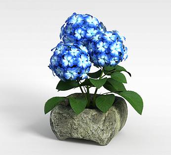 蓝色装饰花