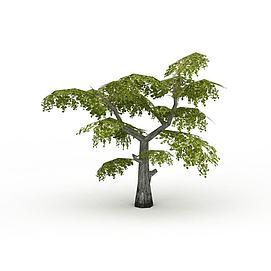 景观<font class='myIsRed'>树</font>3d模型