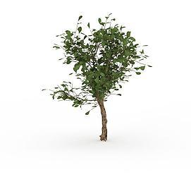 绿化<font class='myIsRed'>树</font>3d模型