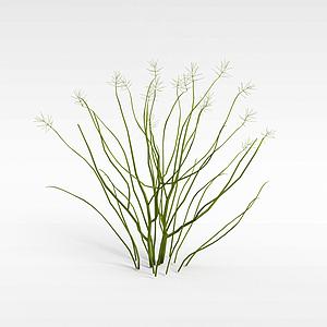 3d绿色灌木模型