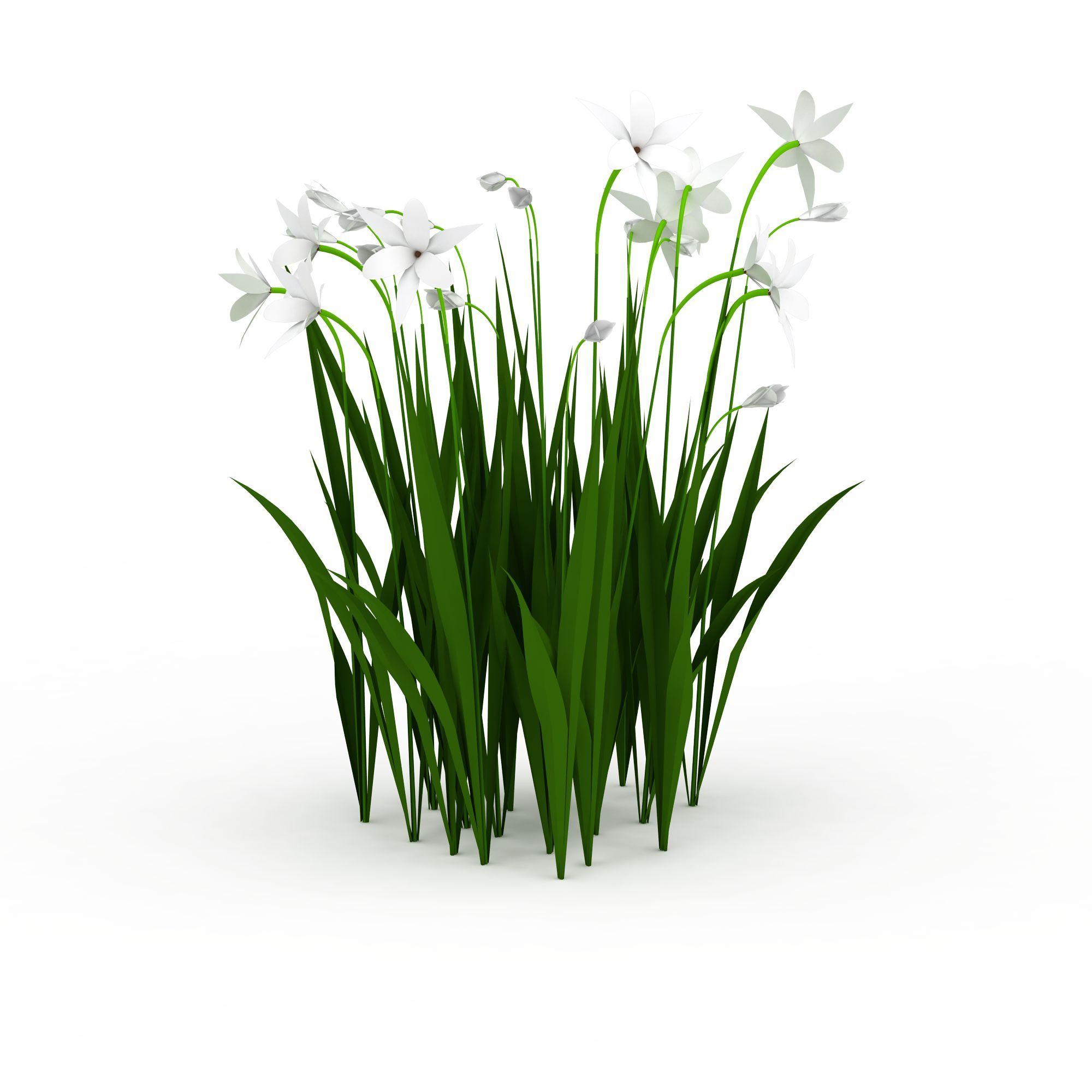 兰花丛图片_兰花丛png图片素材_兰花丛png高清图下载