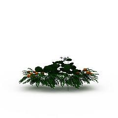 公园开花绿植模型3d模型