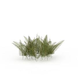 热带灌木3d模型