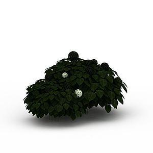 灌木绿丛模型